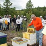 Spicer Bees Maine Beekeepers school